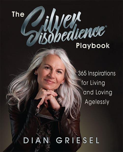 The Silver Disobedience Handbook